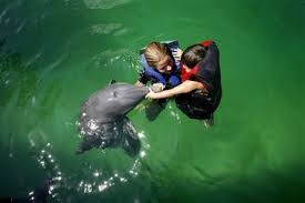 nage dauphin